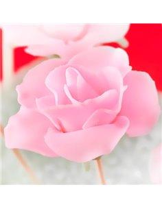 Textura Flor de Lís